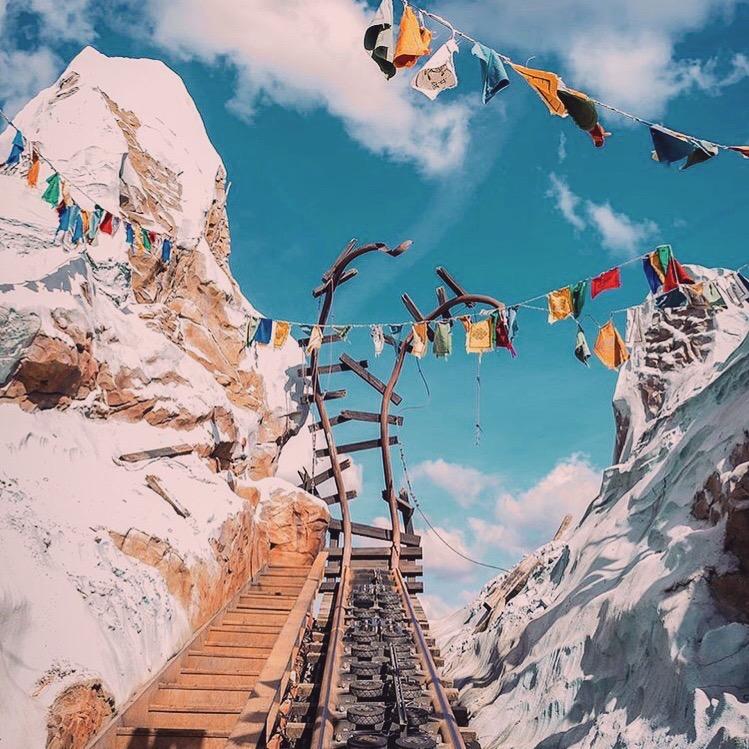 Expedition Everest, Animal Kingdom