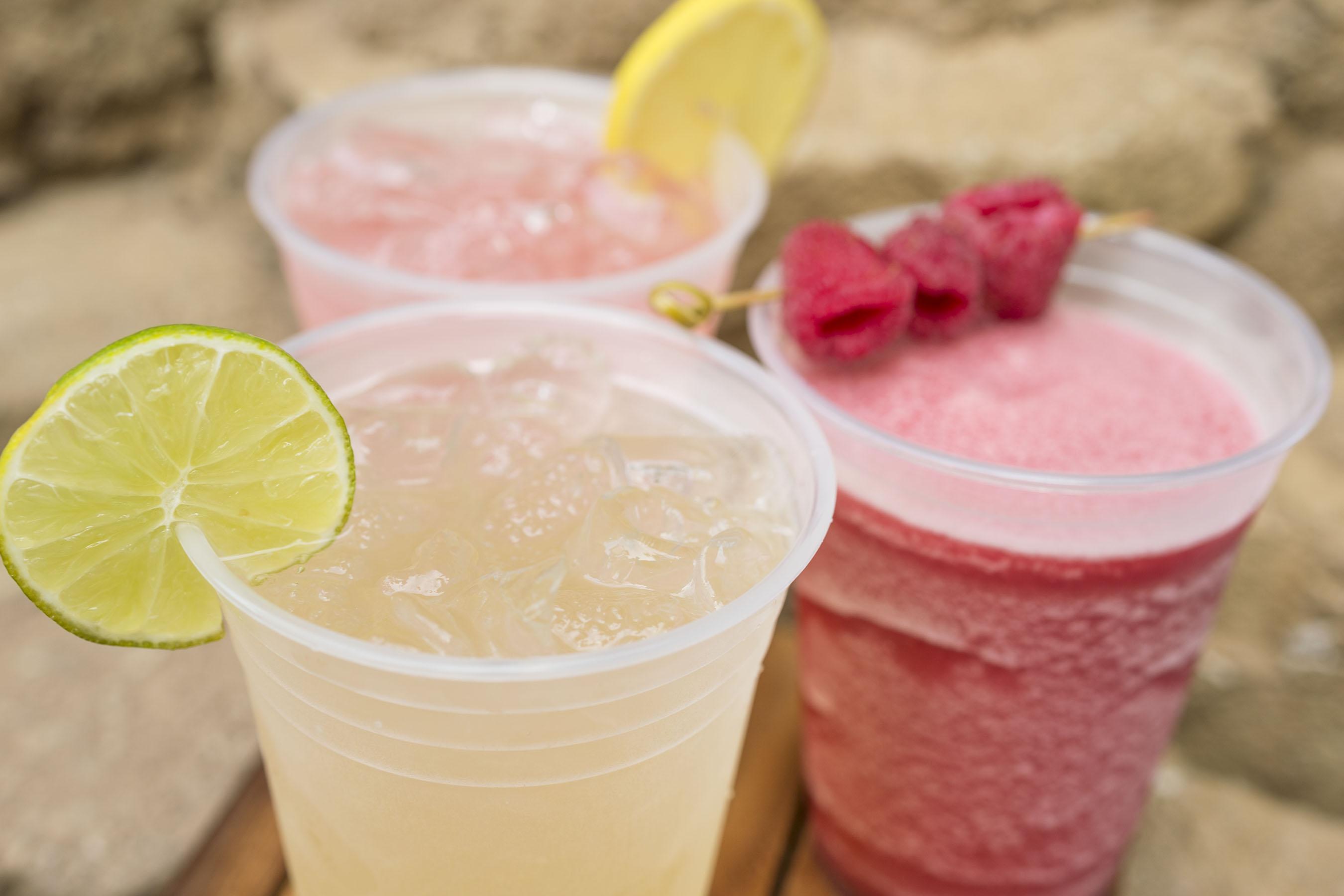 Thirsty River Bar & Trek Snacks Lemonades, Animal Kingdom